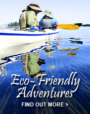 Eco-Friendly Tours